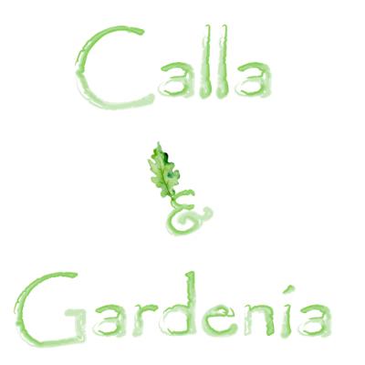 Flower Delivery Melbourne - Calla & Gardenia Florist Icon